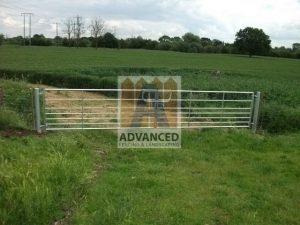 Steel Double Field Gate